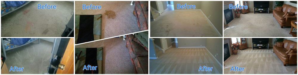 Before and After Carpet Cleaning Diamond Bright